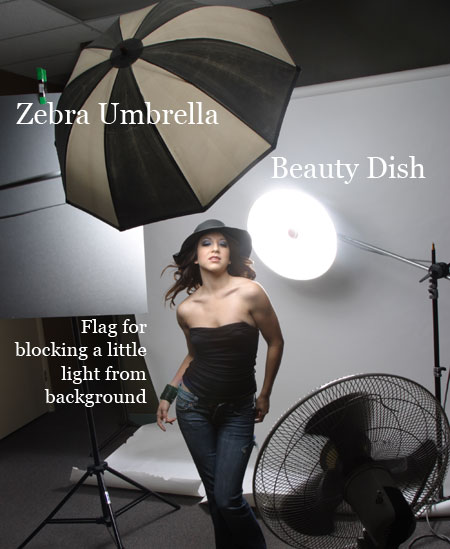 Beauty Dish as a Background on Lighting Essentials