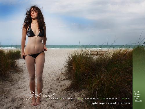 Briana Free Desktop June 2008 Calendar