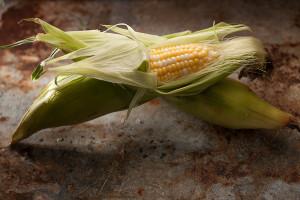 corn-165