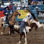 Reno_Rodeo-0054