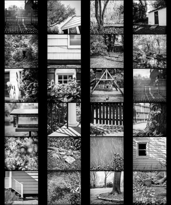 24 Frames Rob Davidson