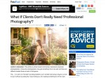 "Peta Pixel Article on ""Professional Photography"""