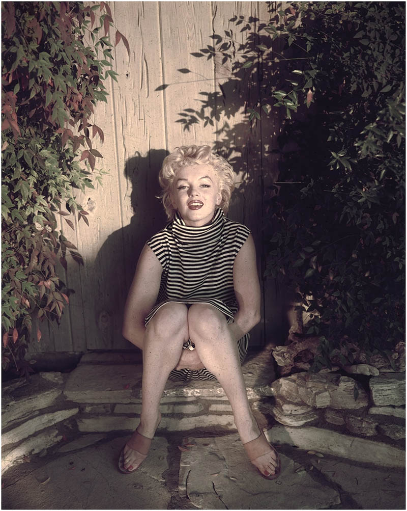 small-marilyn-monroe-sits-in-shadow-against-a-garden-fence-1954-photo-by-hulton-archivegetty-images-ted-baron-color