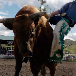 bull-ride-screen-02