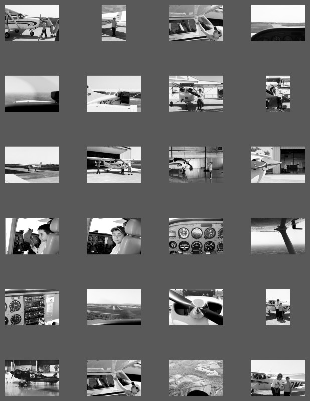 contact_sheet_mcushman2015