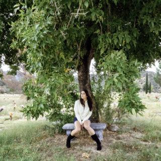 bri-under-tree