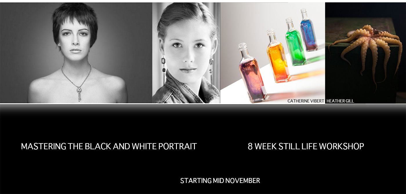 Two Workshops in November: Portrait and Still Life