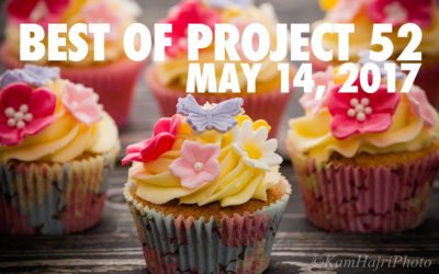 Best of Project 52: May 14th, 2017 Edition