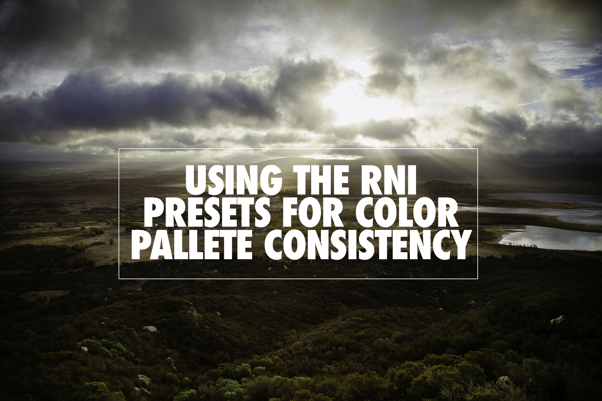 Using the RNI Presets for Color Palette Consistency